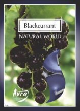 Feketeribizli légfrissítő illatmécses lila színű gyertya