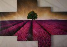 Tengerparti kép lila levendula mező táj