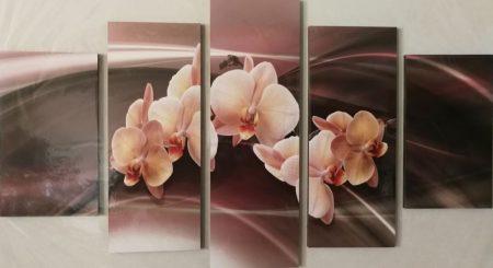 Barack színű orchidea öt részes kép