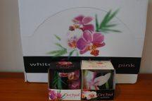 Díszes illatgyertya orchidea illattal díszdobozzal