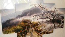 Japán cseresznyefa virág tájkép