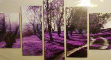 Több részes kép lila erdő