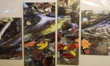 Több részes kép őszi erdő