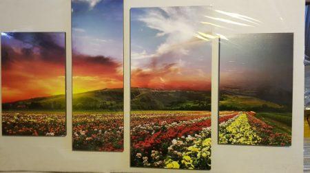 Több részes kép virágmező