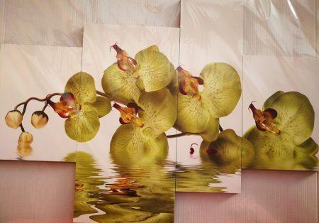 Zöld orchidea négy részes virágos kép falra